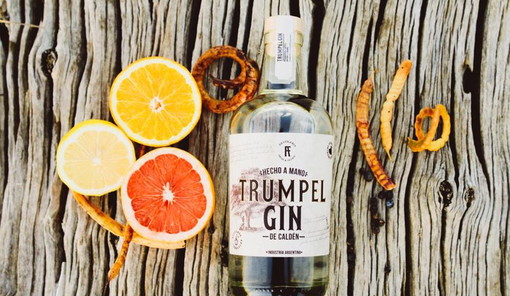 Gin Trumpel