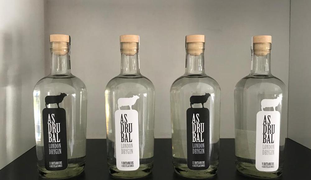 Gin Asdrubal