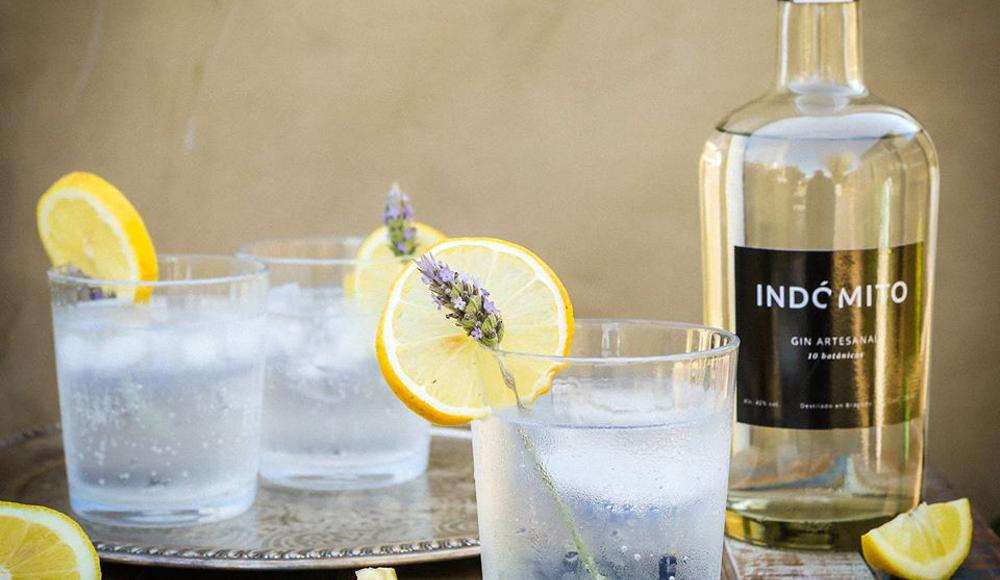Gin Indómito