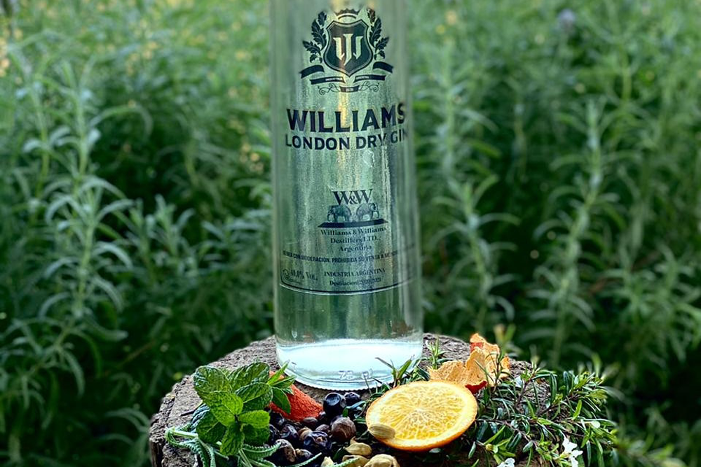 Gin Williams