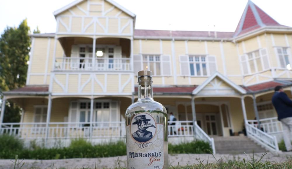Mandigus Gin