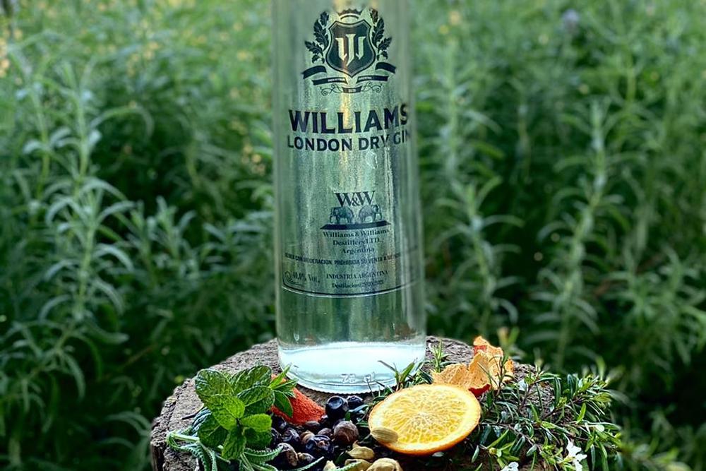 Gin Williams